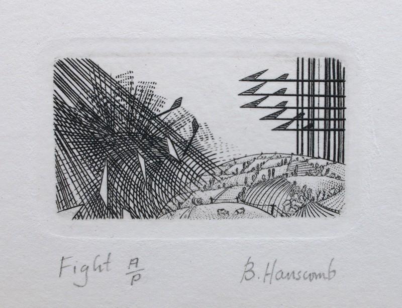 Brian Hanscomb RE, Fight
