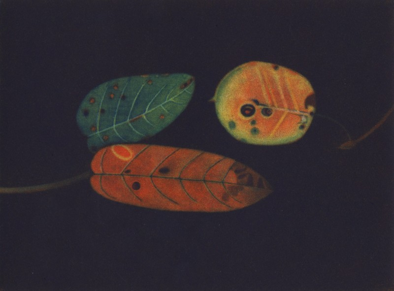 James McCreary ARE, Autumn Leaves III