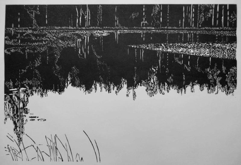 Sasa Marinkov RE, Dark Forest