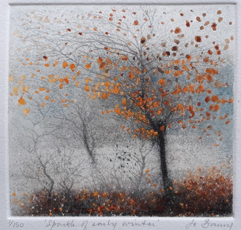 Jo Barry RE, Sparkle of Early Winter