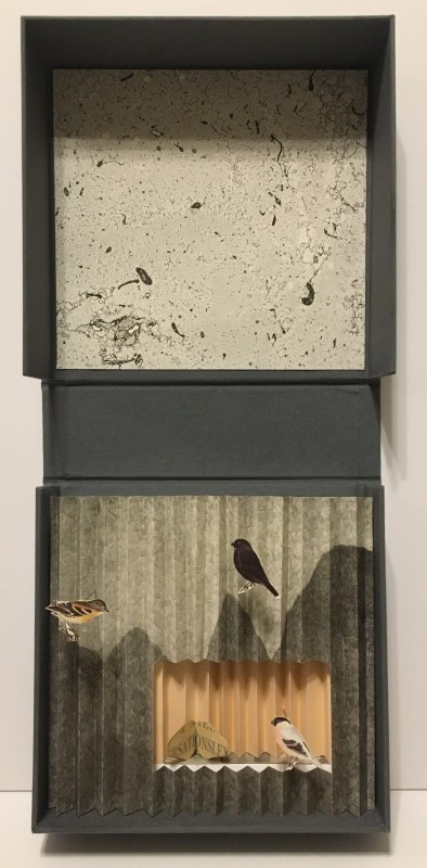 Sharon Lee RE, Confined to the Mountain 1
