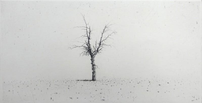 Lars Nyberg RE, Solitude