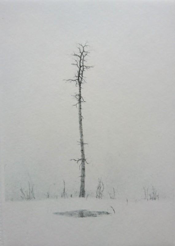 Lars Nyberg RE, Winter Pond