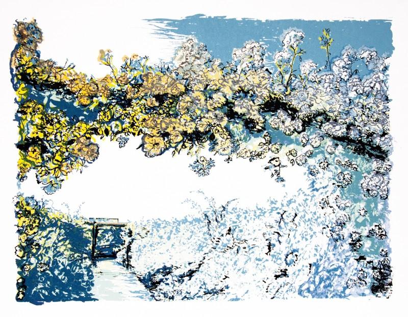 Denise Ballard Wyllie ARE, Long Summer Garden
