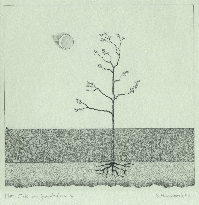 Brian Hanscomb RE, Moon, Tree & Granite Field