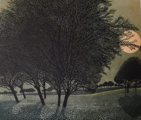 Phil Greenwood RE, Primrose Moon
