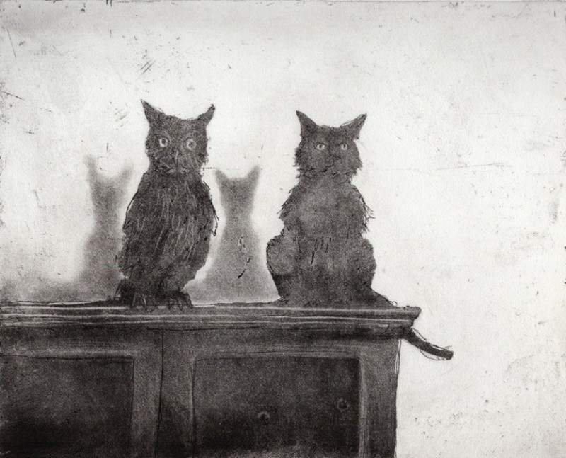 Chris Salmon RE, Owl and Cat