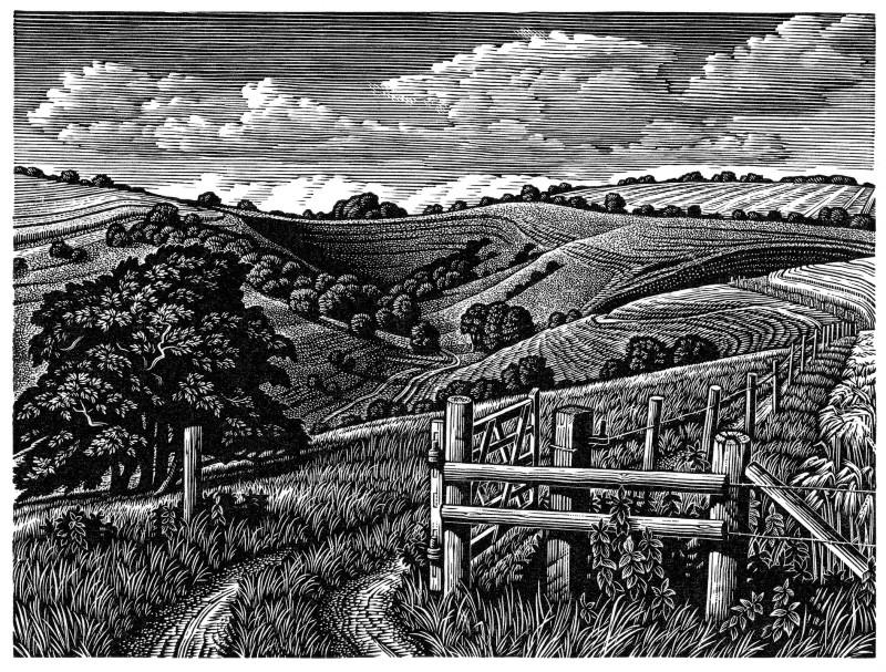 Howard Phipps ARE, Malacombe Bottom
