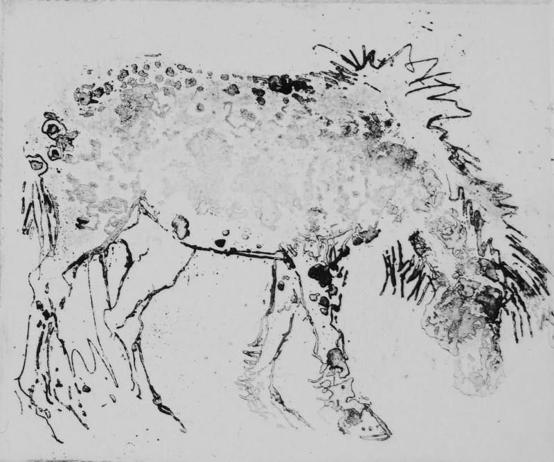 Rosamund Jones RE, Dapple Pony
