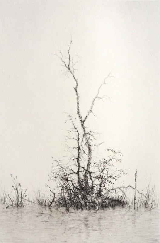 Lars Nyberg RE, Silence
