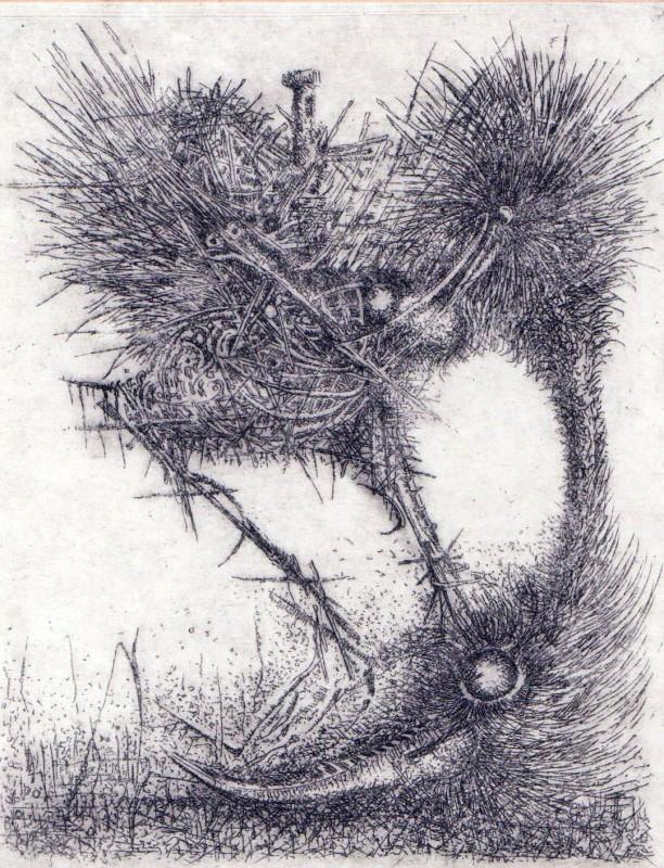 Peter Kirkilo ARE, Bird