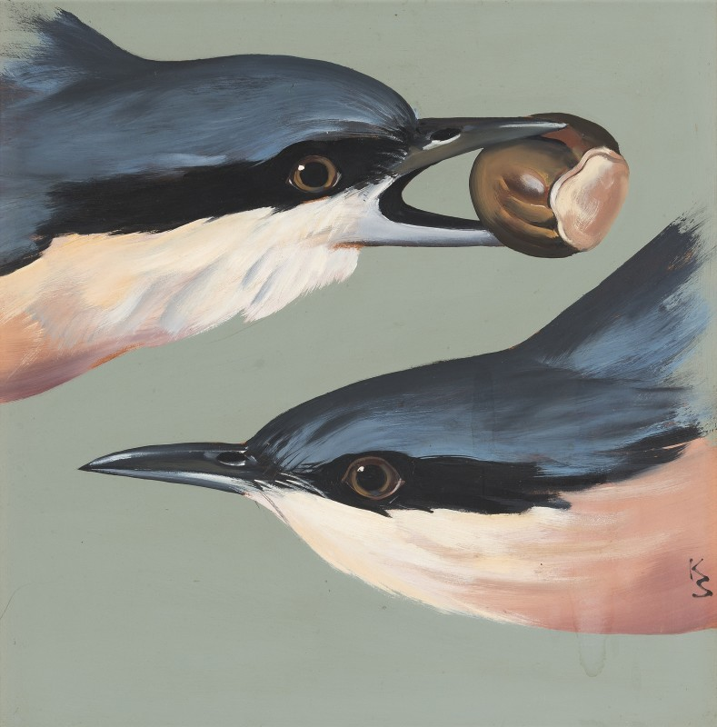 A pair of nuthatch