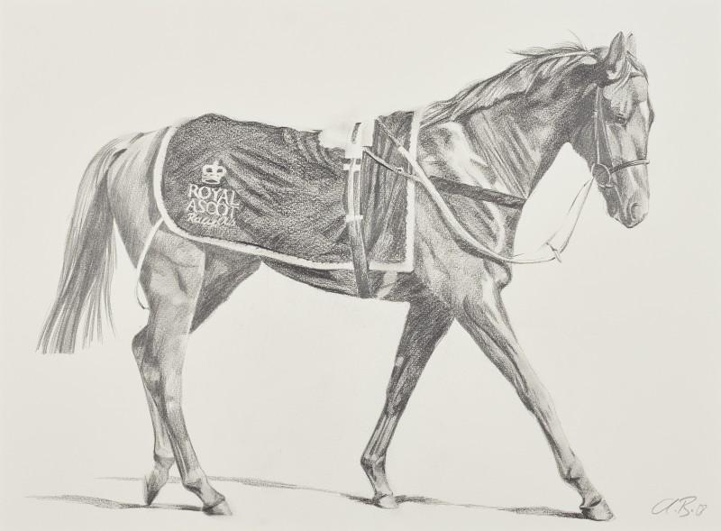 Alan Brassington , Revenue sketch