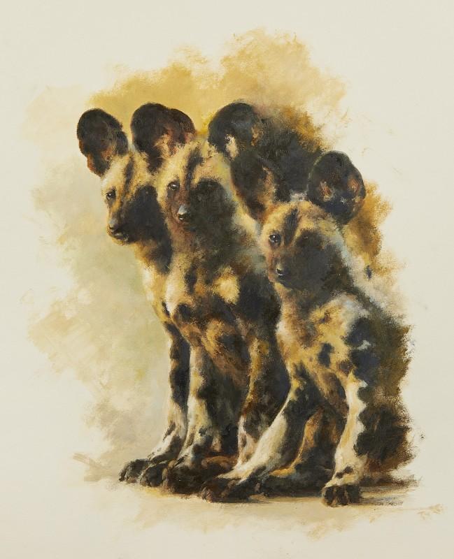 Mandy Shepherd , Wild Dogs