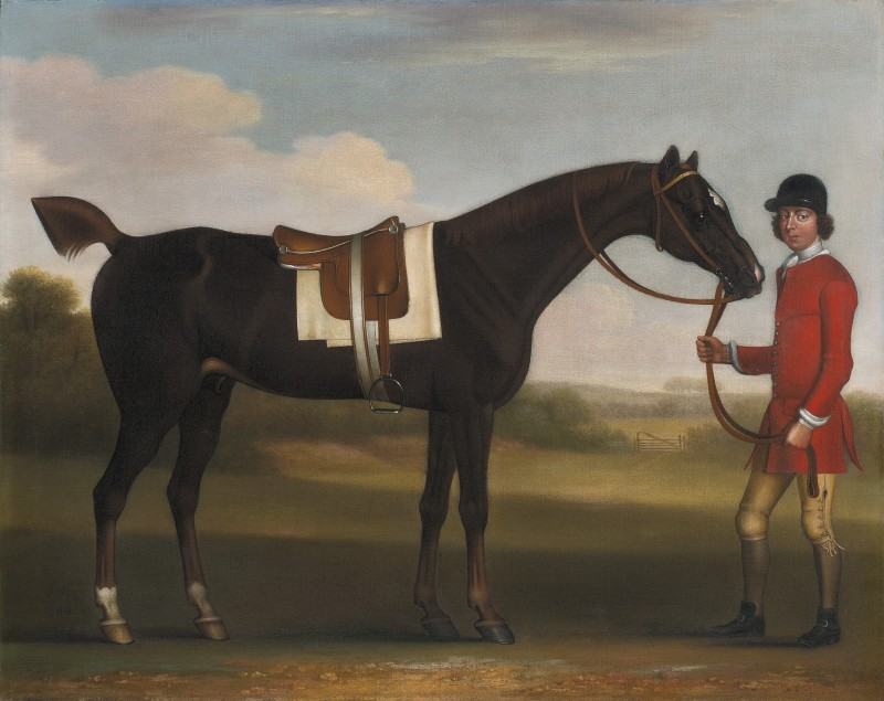 A dark bay horse held by a liveried groom in a landscape
