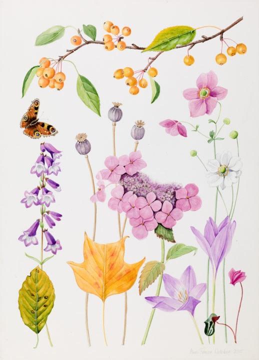 Ann Fraser , The October garden