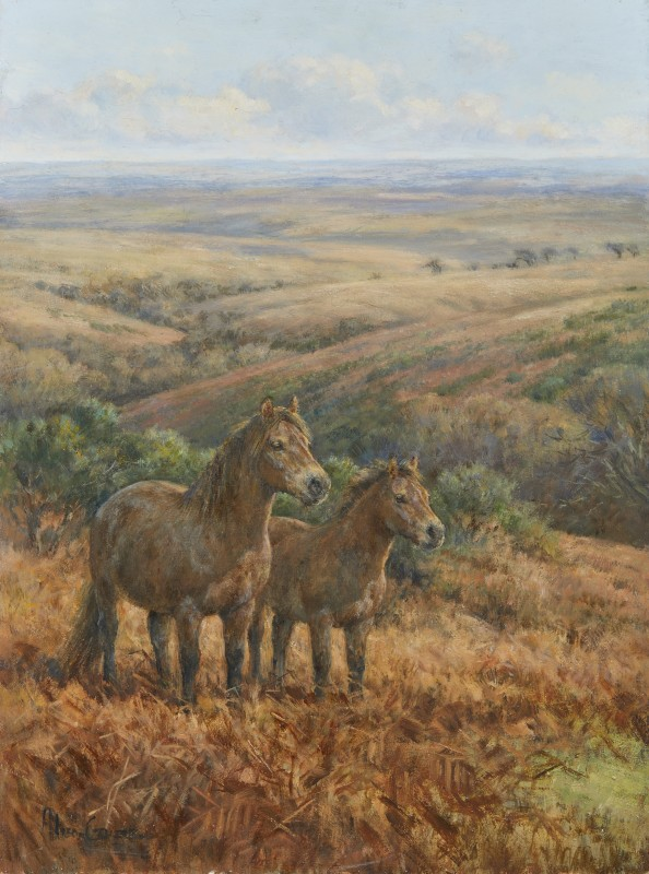 Alison Guest , Mare and foal