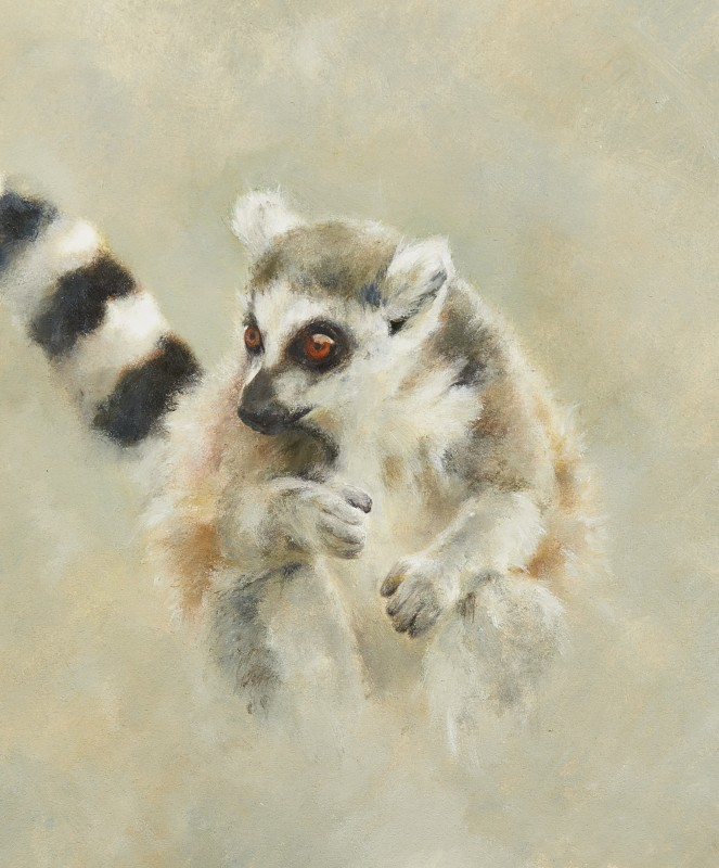 Mandy Shepherd , Lemur