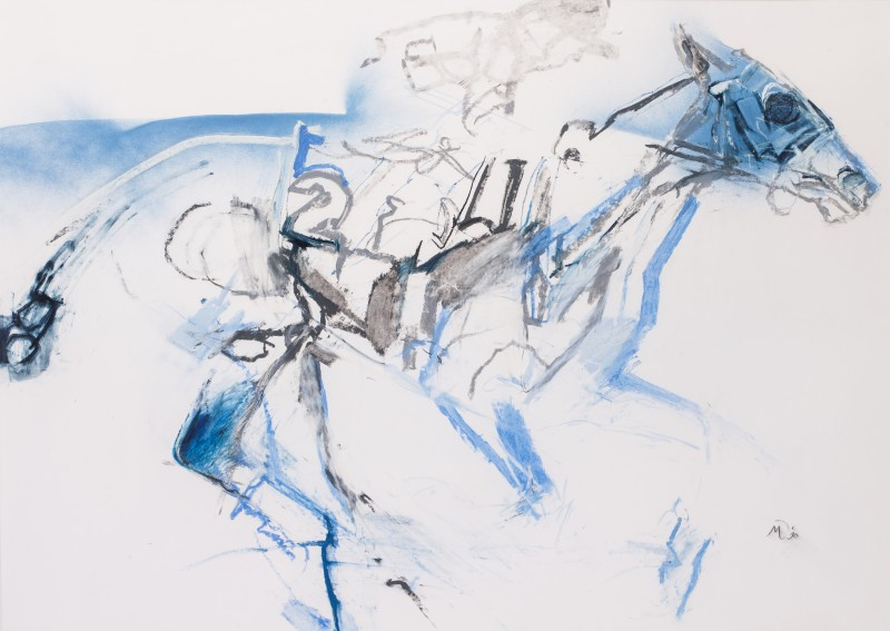 Mirjam Verhoeff , Horse and Jockey