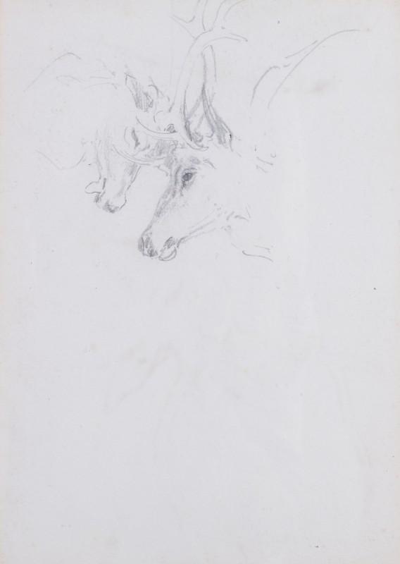 William Woodhouse , Double-sided Stalking study I