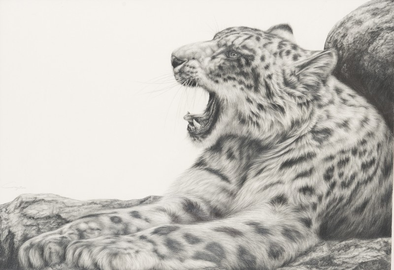 Keith Gray , Snow Leopard