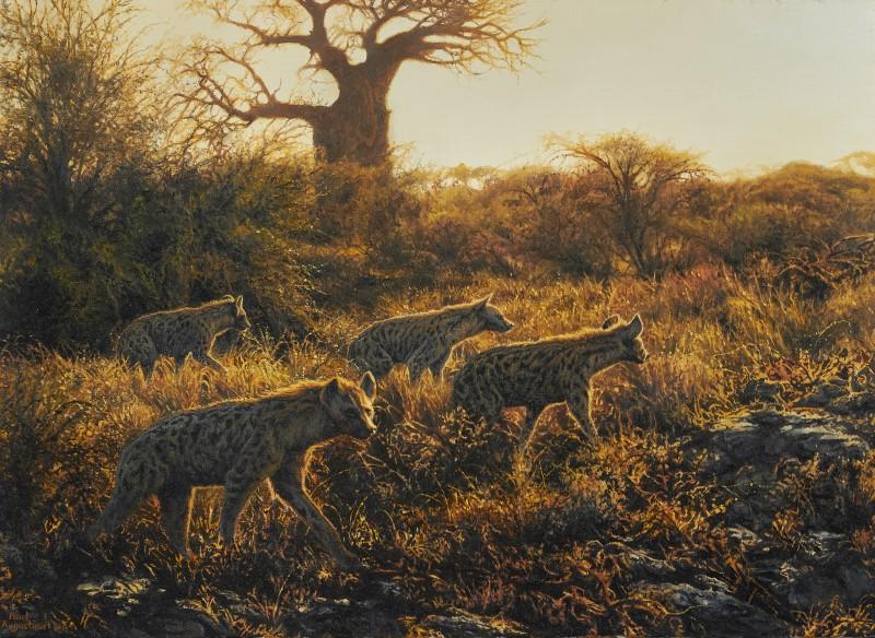 Sunrise, Ngwezumba