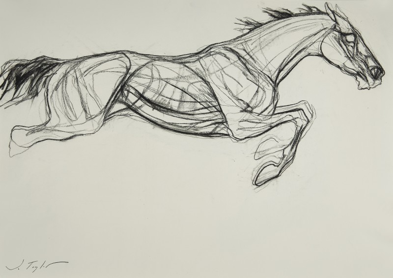 Jo Taylor , Leaping horse