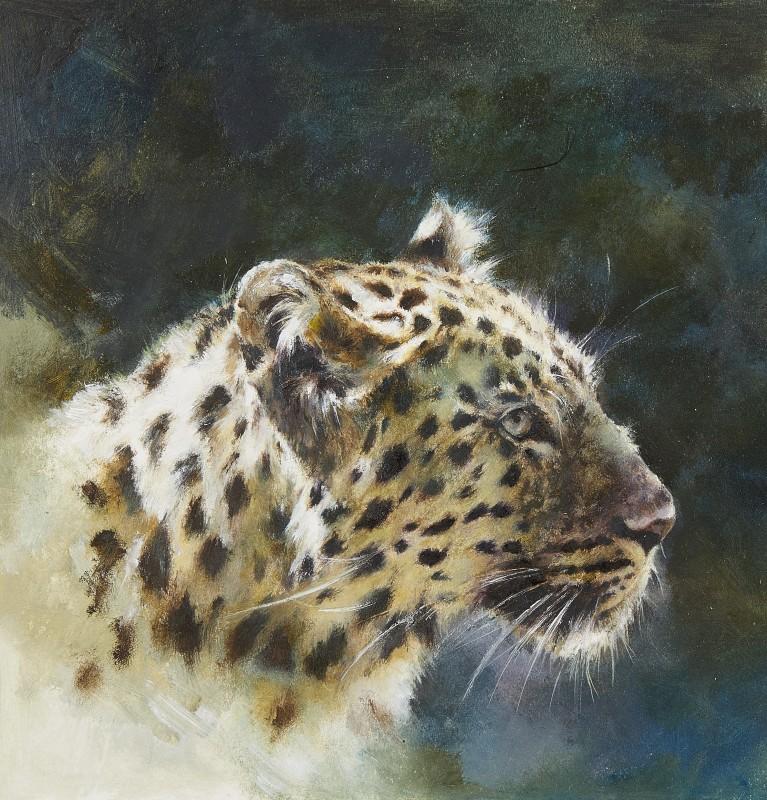 Mandy Shepherd , Leopard