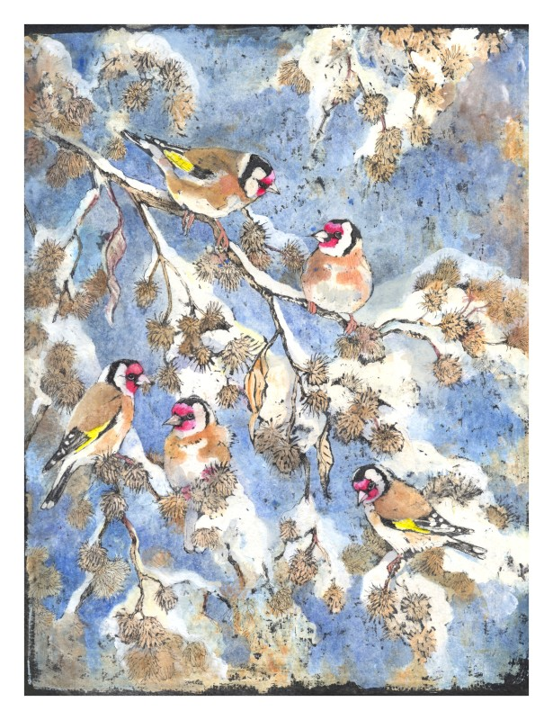 Emma Faull , Winter Goldfinch ink wash technique