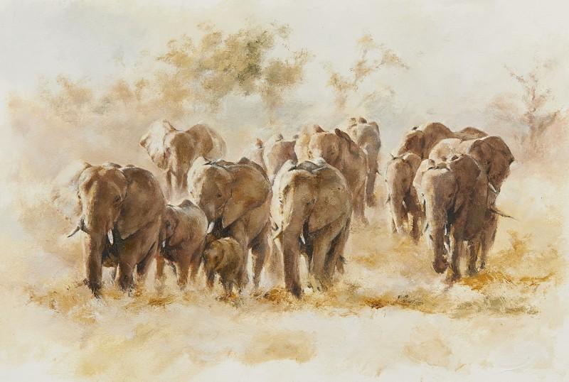 Mandy Shepherd , Elephants