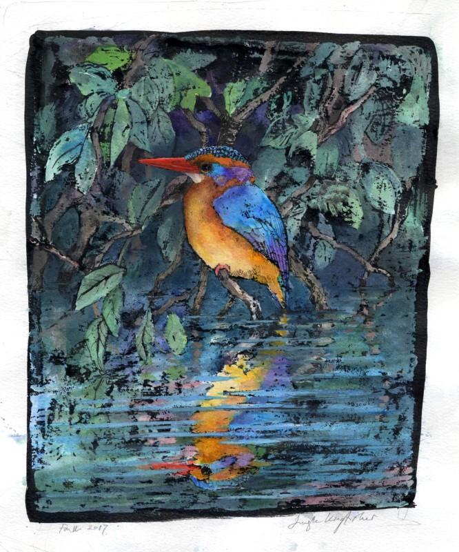 Jungle Kingfisher