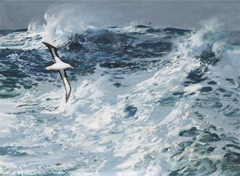 Rough seas with albatross in flight