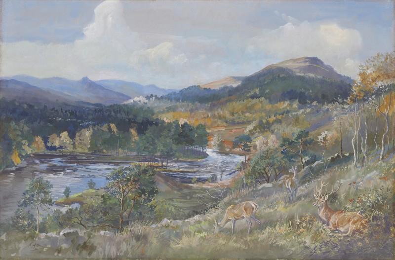 Glen Affric, Knockfin