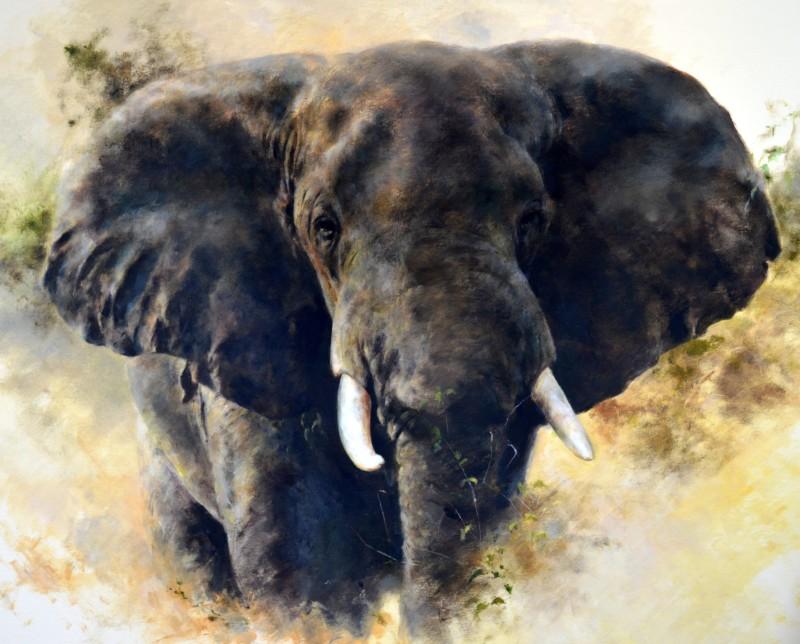 In charge, Elephant