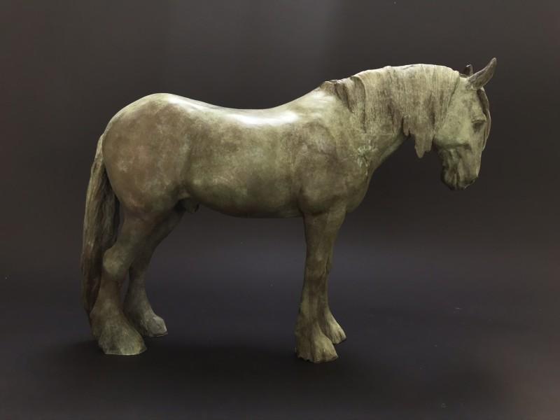 Clydesdale horse in verdigris