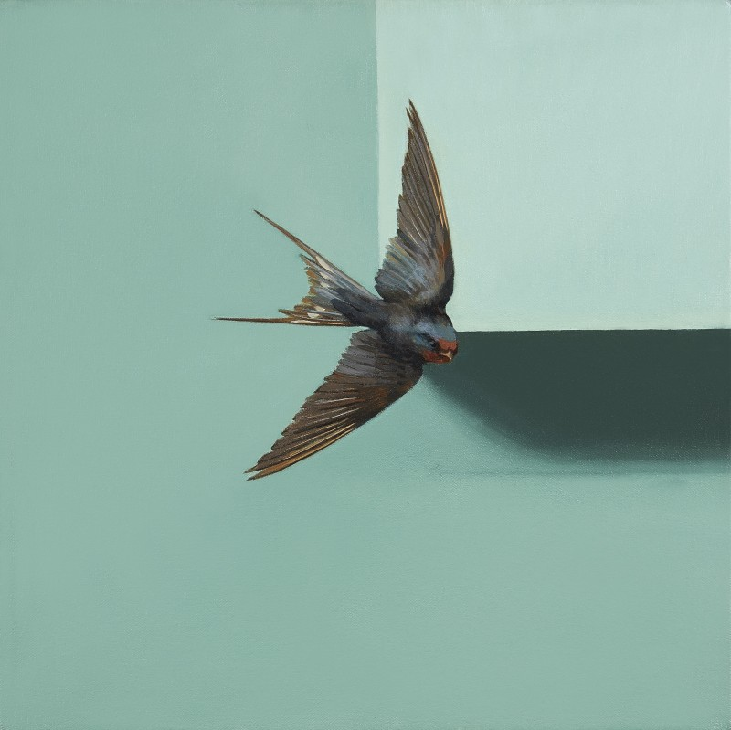 Jennifer Hooper , Swallow