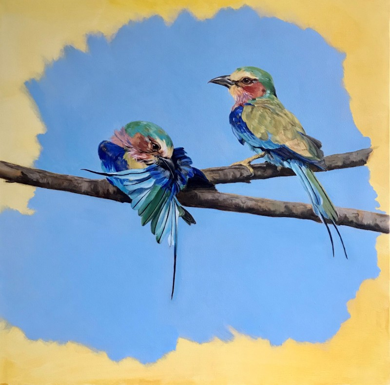 Lilac breasted Roller pair