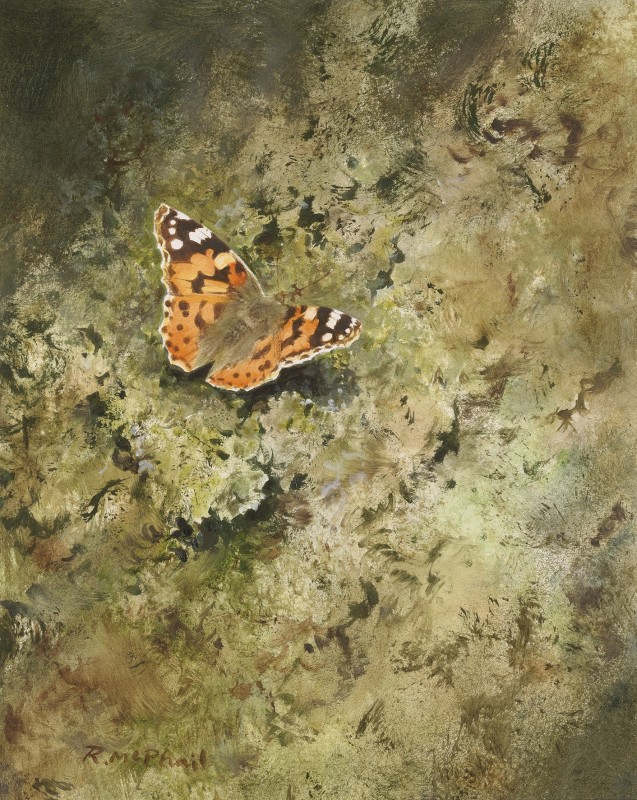 Rodger McPhail , Painted Lady