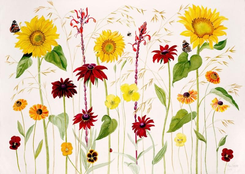 Ann Fraser , The August garden