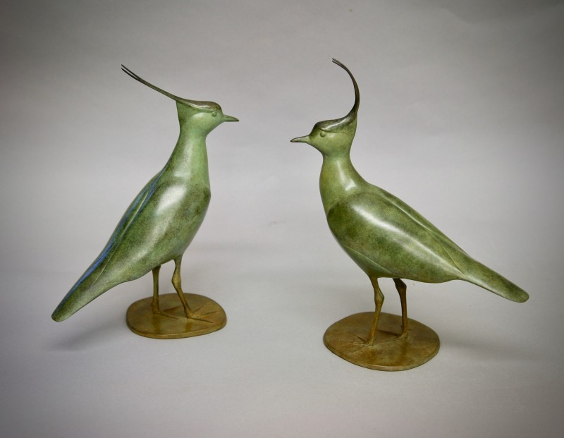 A pair of Lapwings