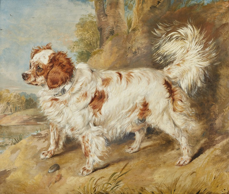 Sir Edwin Landseer , RA, A Blenheim spaniel, Mr Plumer's favourite dog