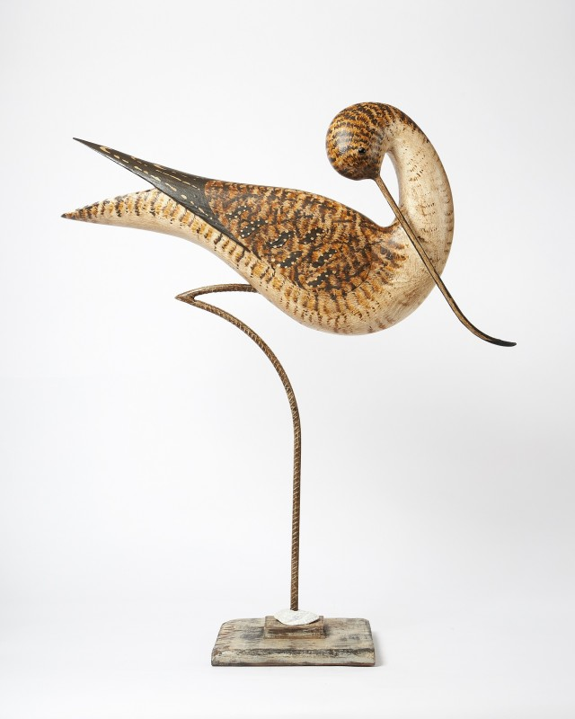 Large Curlew