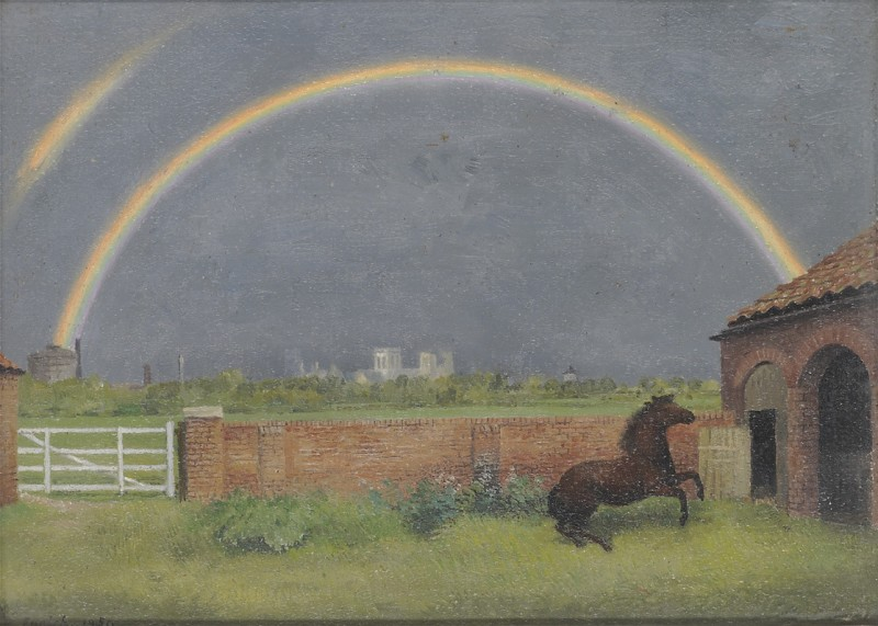 The rainbow and the pony: York