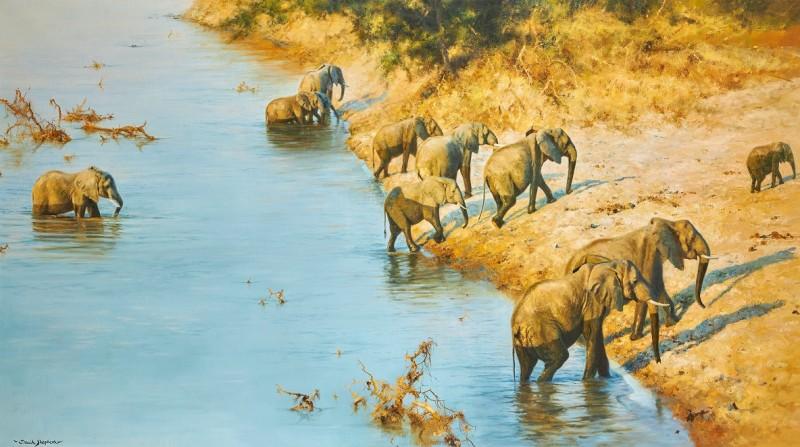 Elephants crossing the Luangwa Valley, Zambia