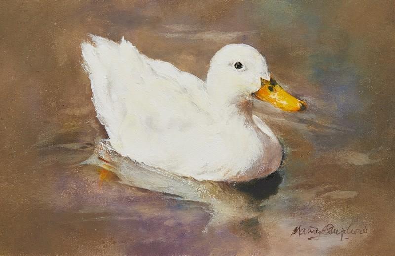 Mandy Shepherd , White Duck