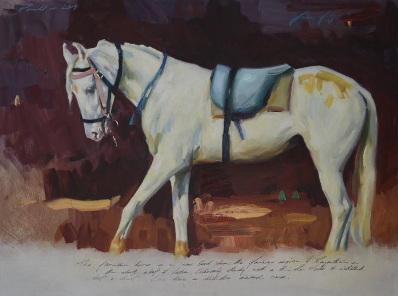 Marcus Hodge , Grey Marwari
