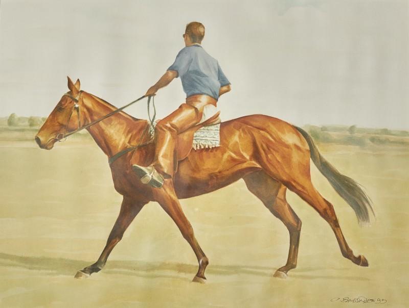 Alan Brassington , Forest, a polo pony