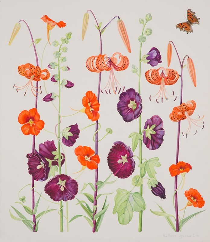 Ann Fraser , Tiger Lillies & Hollyhock with Comma Butterfly
