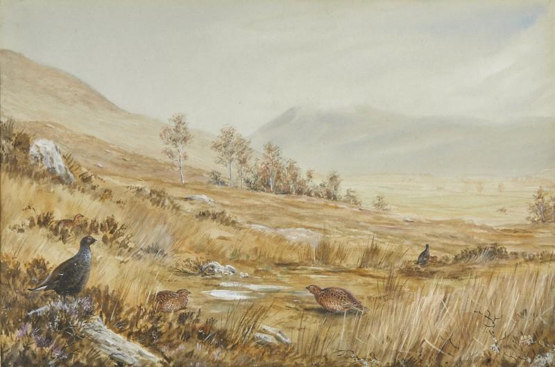 Moor scene