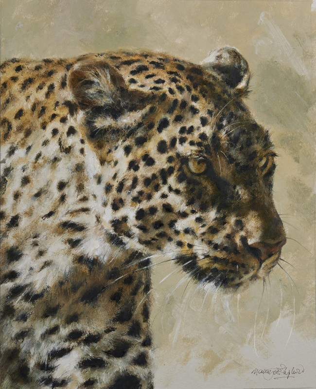 Mandy Shepherd , Leopard head